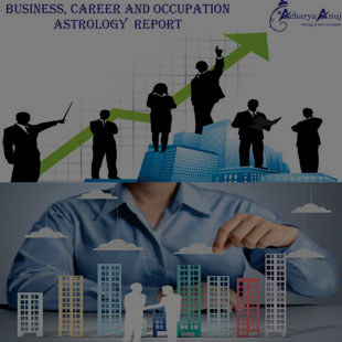 Business and Occupation